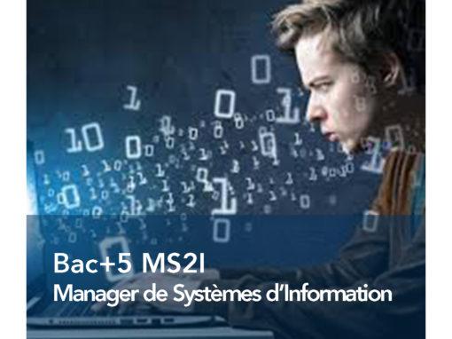 Manager de Systèmes d'Information et d'Infrastructures (MS2I)